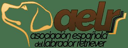 Asociación Española de Labrador Retriever